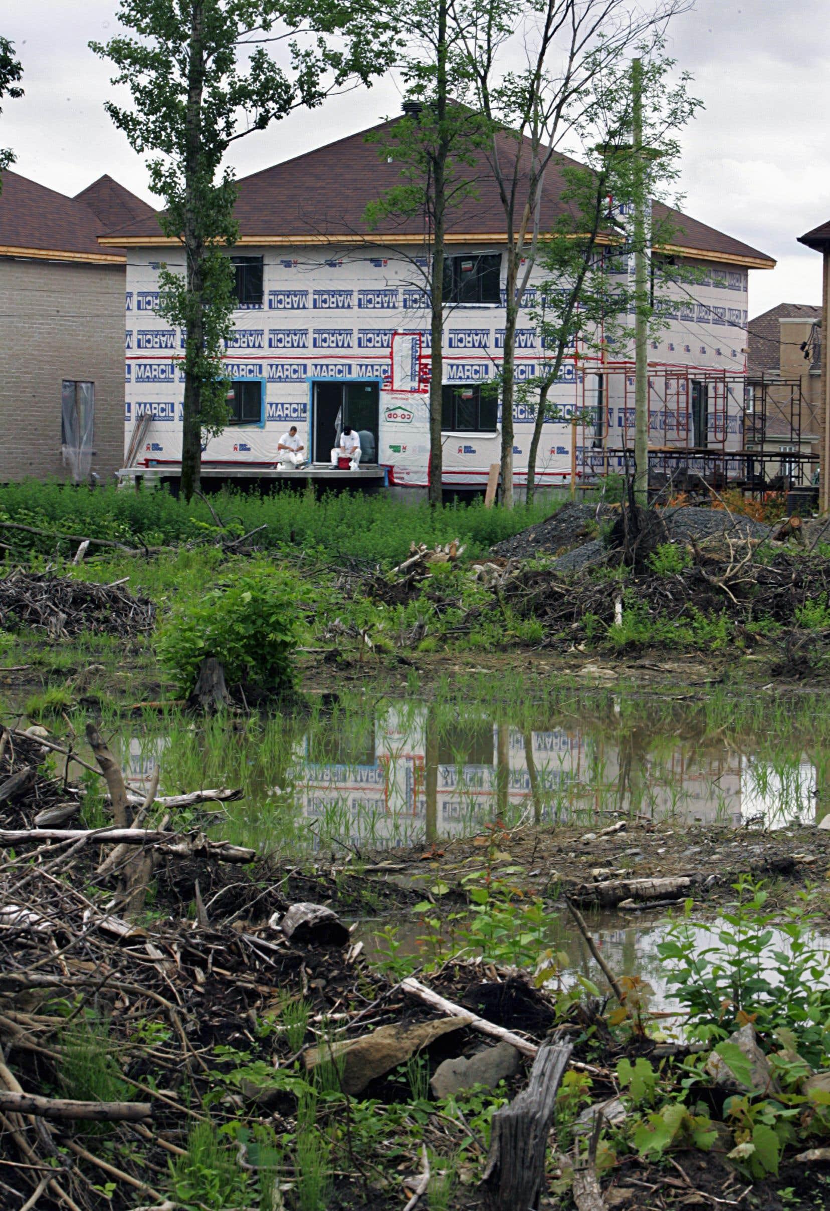 Adopté en juin 2017, le projet de loi 132 visait à stopper la destruction des milieux humides en appliquant le principe «d'aucune perte».