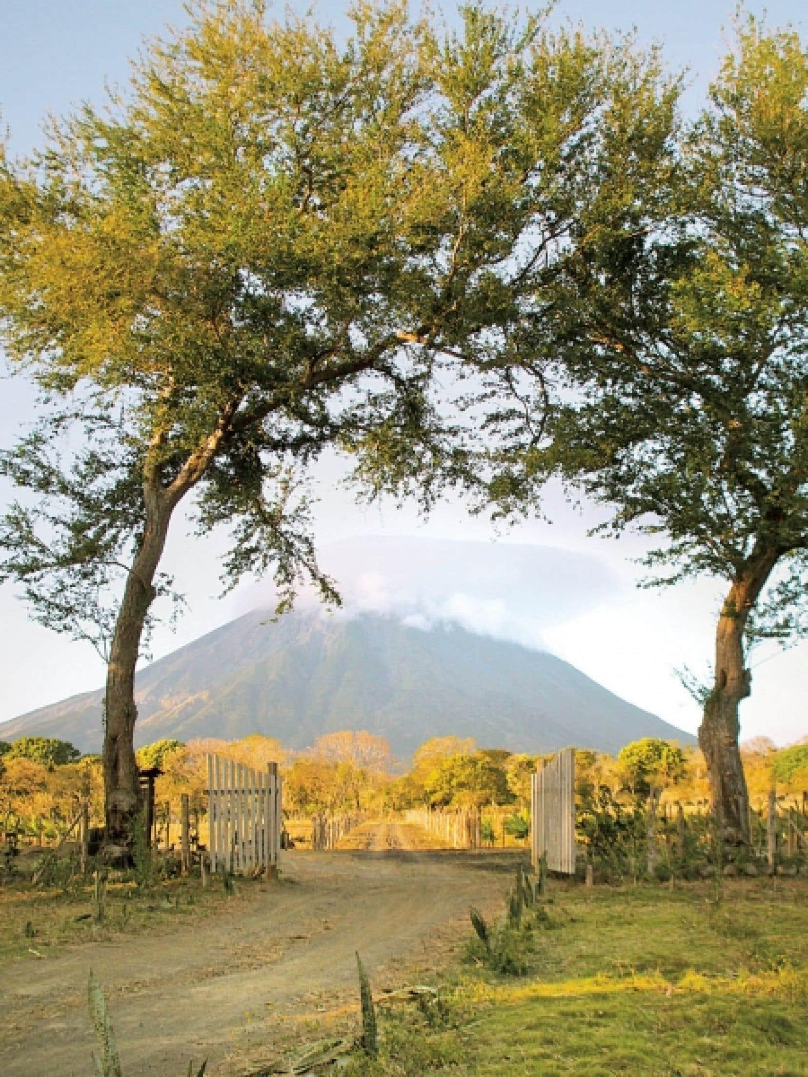 Ometepe a deux volcans jumeaux, d'abord Maderas, qui protège des vents dominants de l'est, et son frère Concepción, ci-dessus. <br />