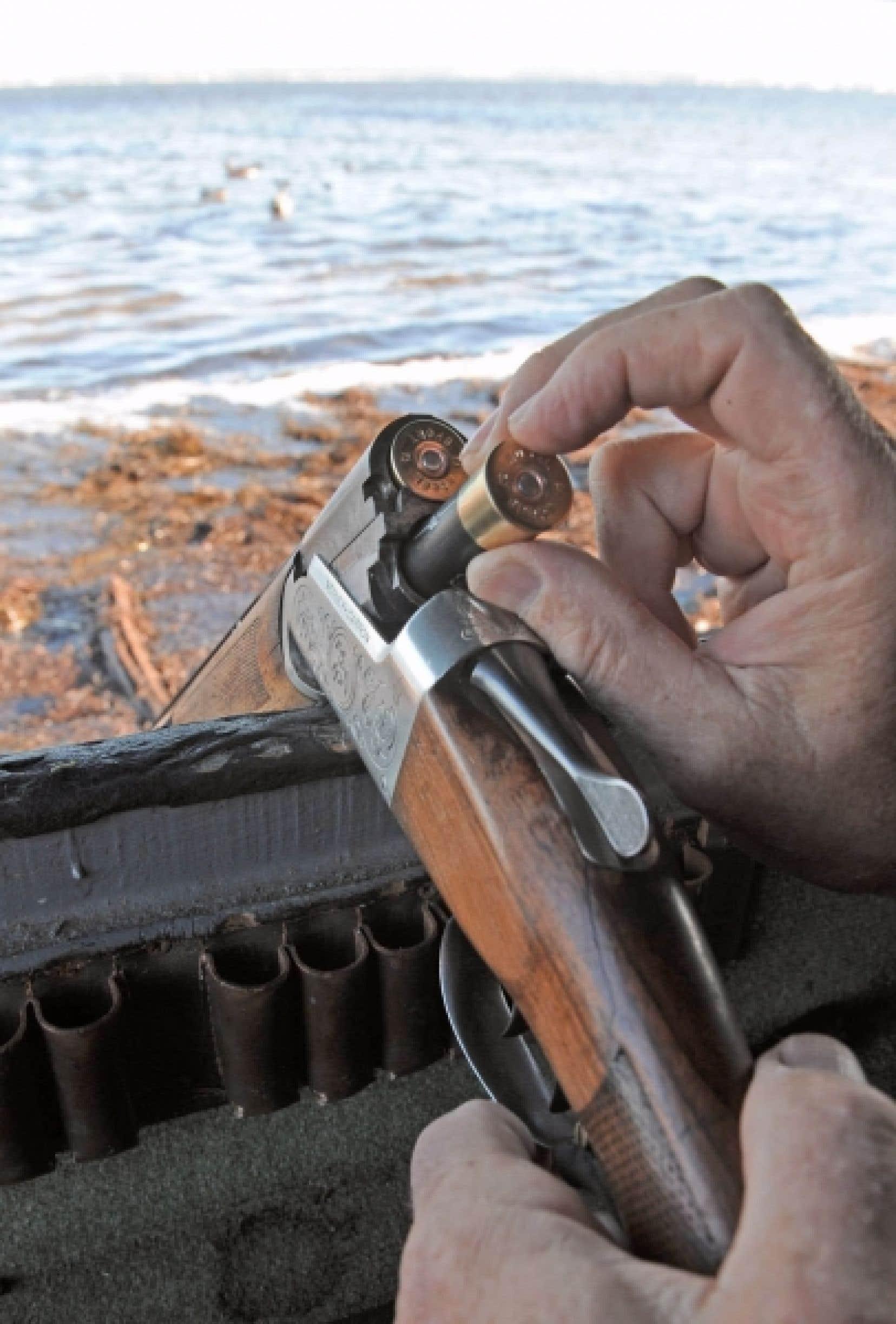 Le nord de l'Ontario est fait de zones rurales où la chasse et la pêche font partie du quotidien des gens. En 2008, plusieurs néodémocrates avaient promis l'abolition du registre des armes à feu. À l'automne 2010, quatre candidats de cette région du Canada ont changé leur fusil d'épaule pour assurer la survie du registre.<br />