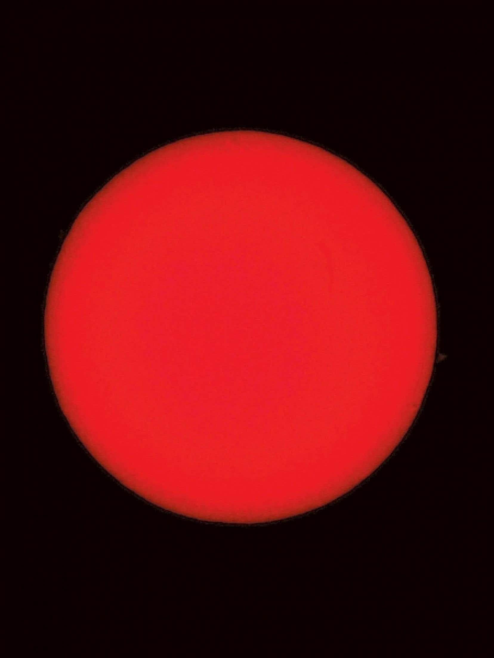 Image tirée de 31 soleils (Dawn Chorus), 2010, au Musée d'art contemporain de Montréal, du 7 octobre 2011 au 3 janvier 2012