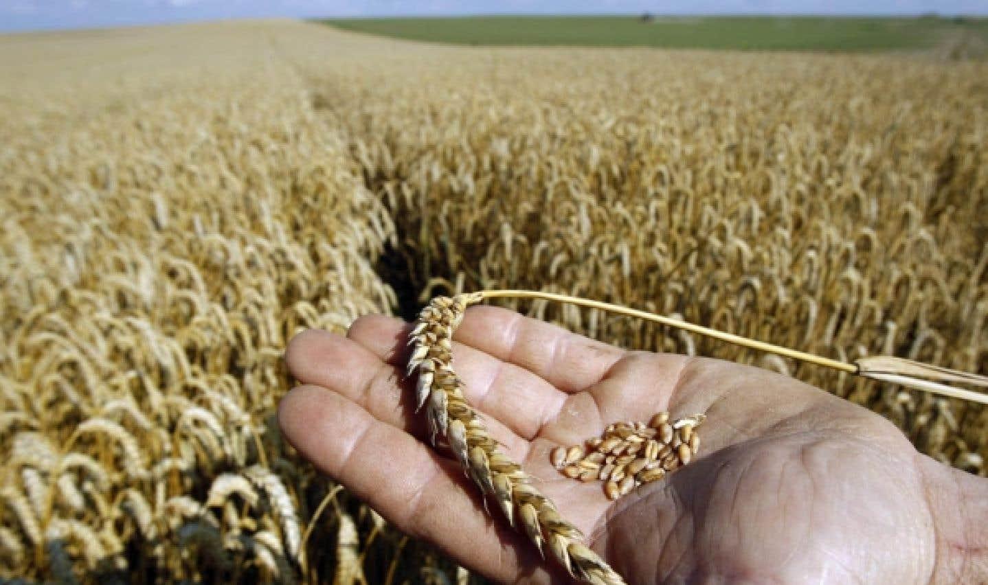 L'économie sociale et solidaire font la promotion d'une agriculture familiale qui vise à favoriser l'accès à la propriété et aux terres pour les familles afin de leur assurer des denrées.