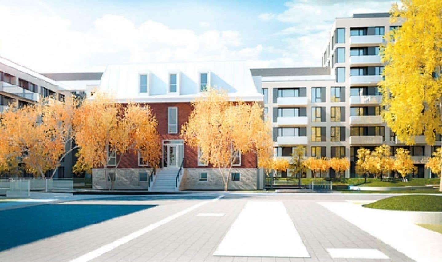 La fenestration des condominiums de la première phase du U31 est abondante, de sorte que les unités profitent de la lumière du jour.
