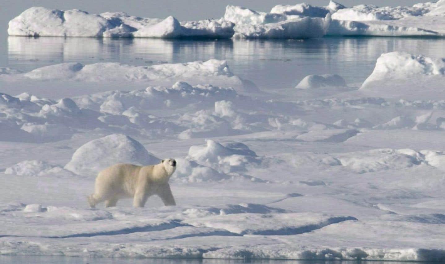 Énergie dans l'Arctique: les Autochtones réitèrent leur opposition aux forages pétroliers