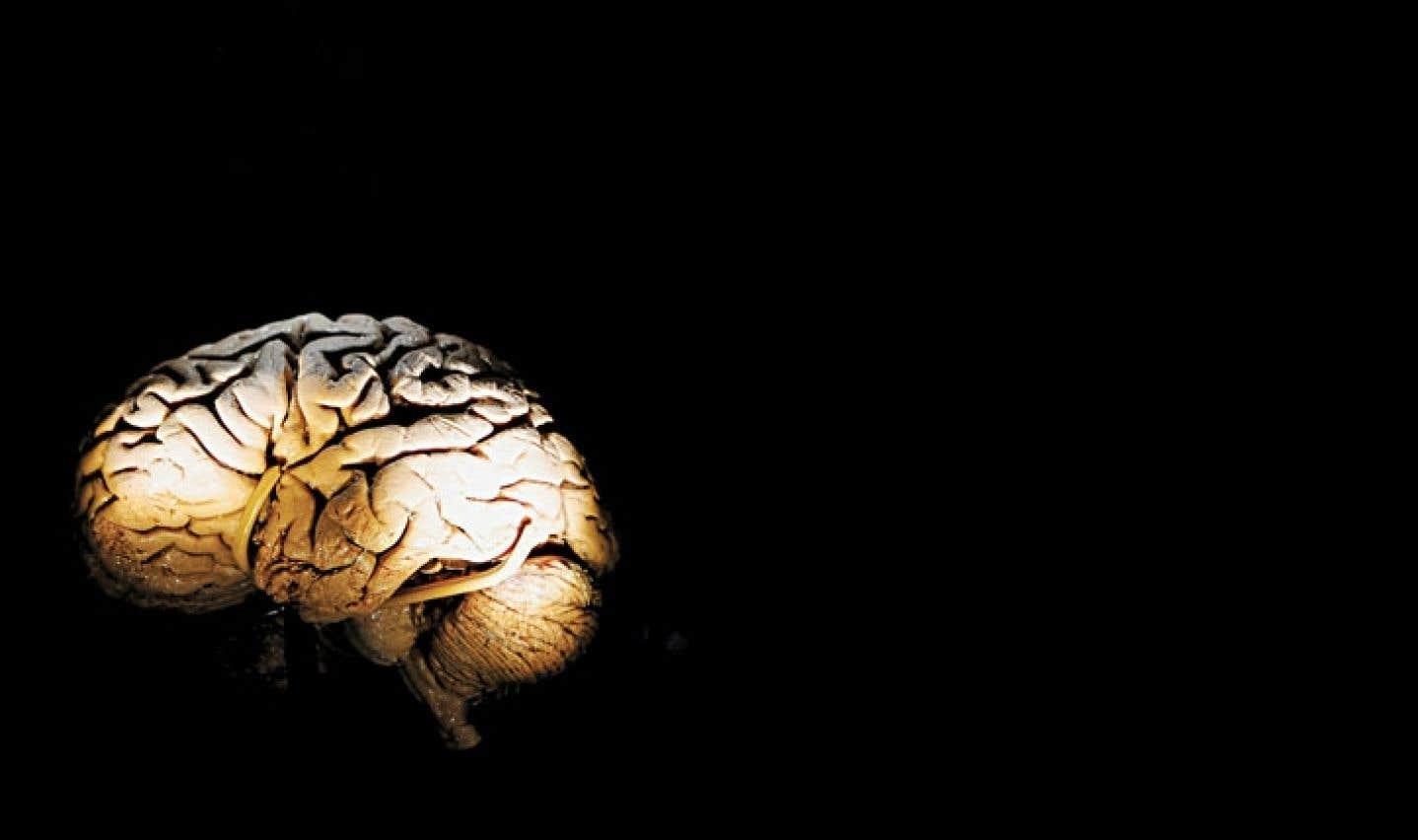 Le doute entourant la commotion cérébrale