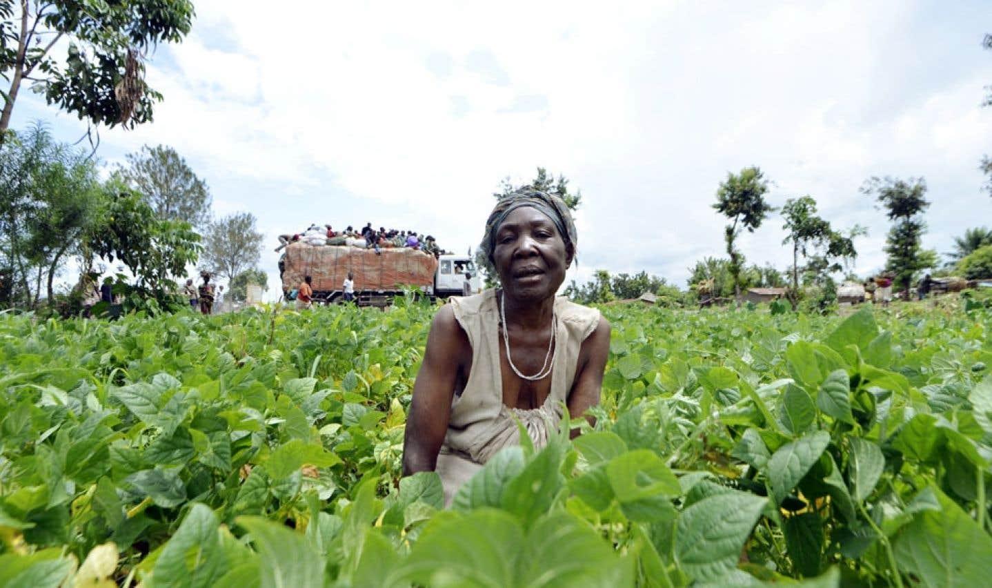 L'objectif du projet de l'Institut de la Francophonie pour le développement durable est ultimement de réduire la pauvreté en milieu rural grâce aux énergies renouvelables.