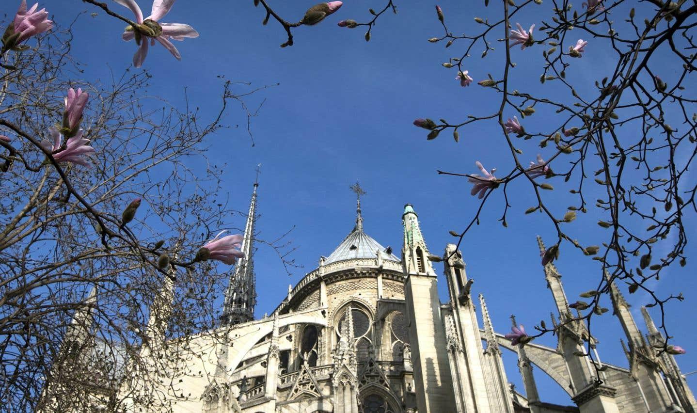 Des arbres fleurissent près de la cathédrale Notre-Dame, à Paris.