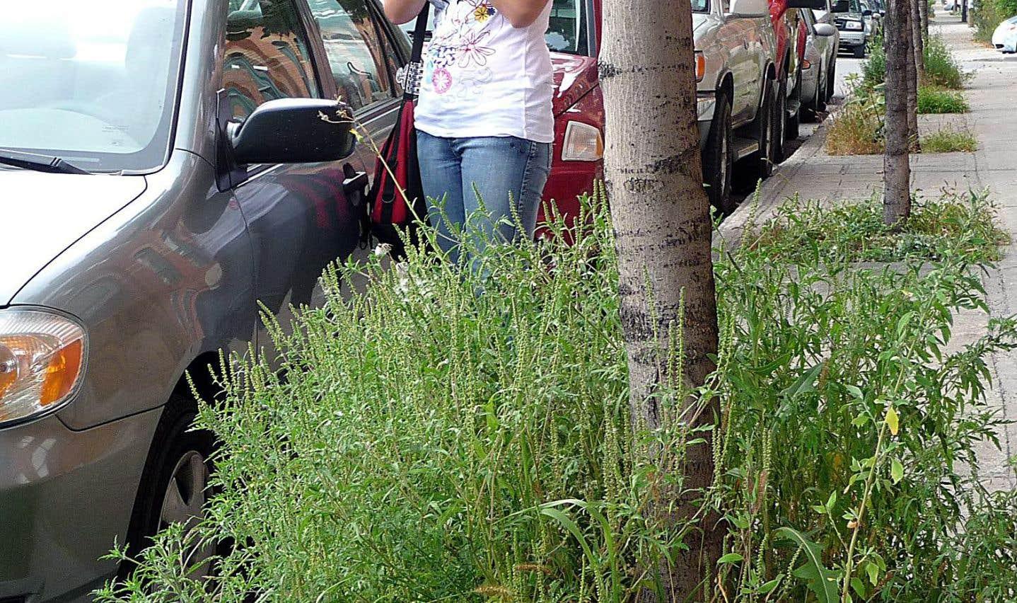 Depuis 2006, Elisabeth Levac réalise un suivi des concentrations du pollen des érables, des bouleaux, des pins, des chênes, de l'herbe à poux et de bien d'autres plantes, dans l'air sherbrookois.