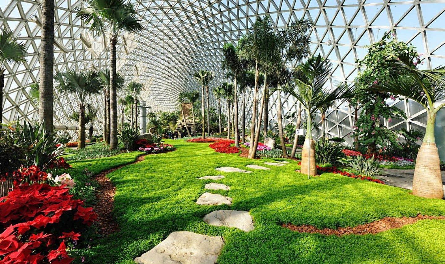 Des applications utiles pour identifier les v g taux le for Le jardin botanique camping