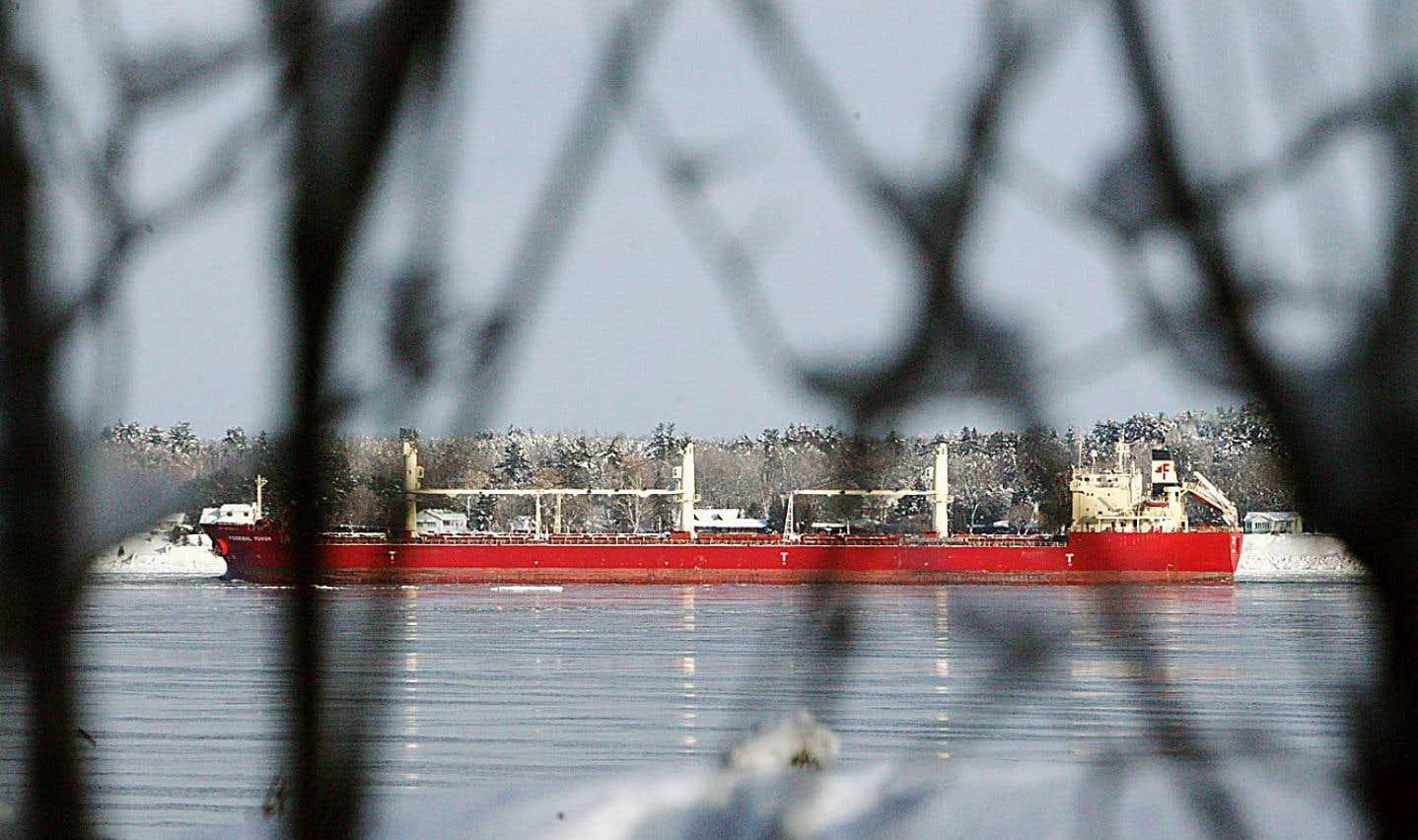 Coup sur coup, en 2012, les conservateurs ont, de l'avis de plusieurs scientifiques et écologistes, «mis la hache» dans des lois environnementales cruciales au Canada.