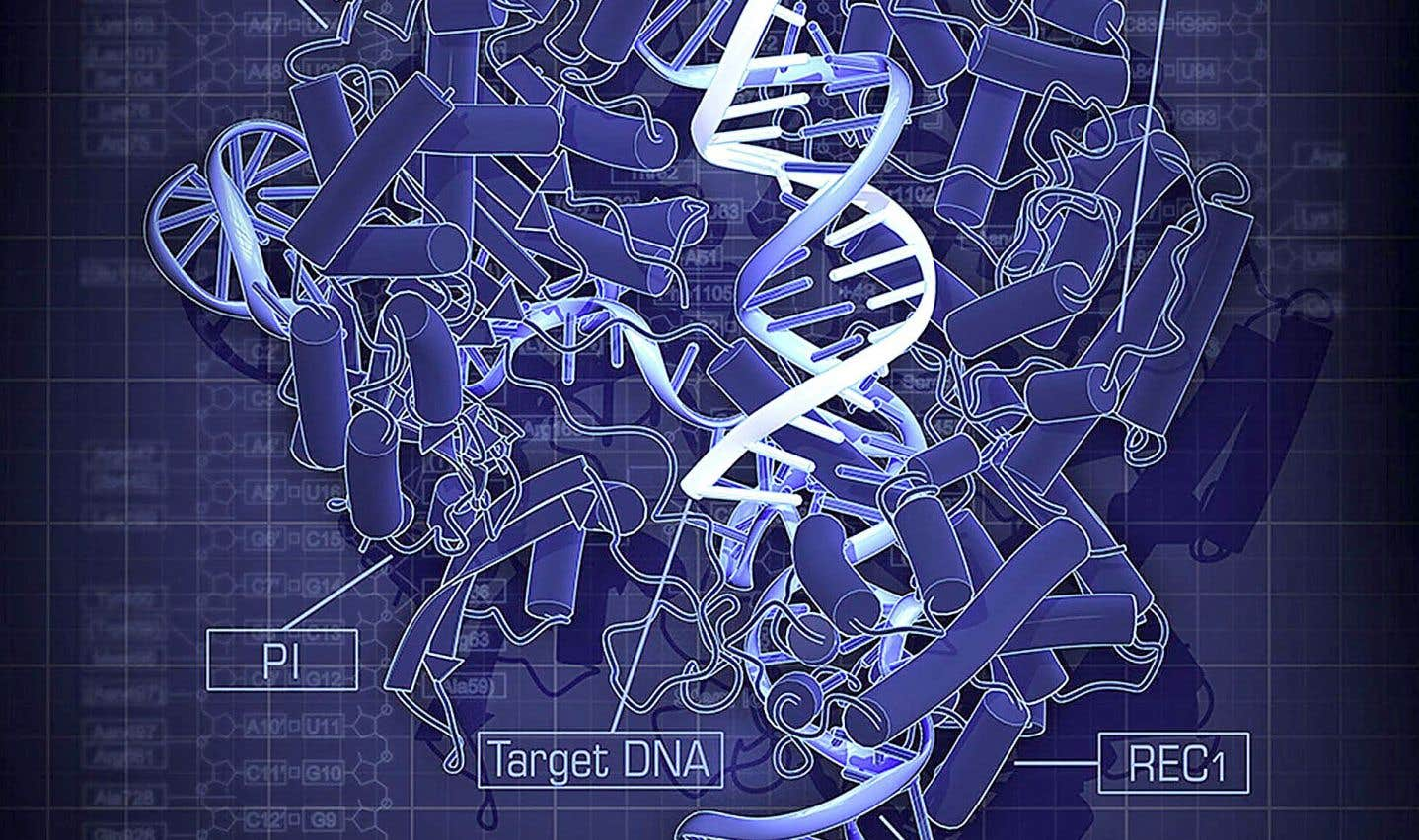 Formidable CRISPR-Cas9