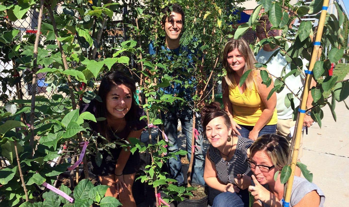 Un arbre à la fois pour transformer le paysage montréalais