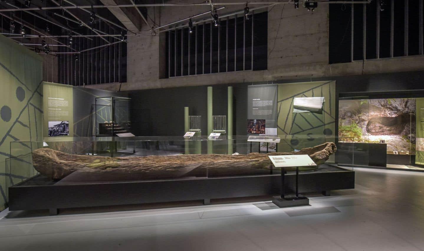 «Une pièce maîtresse de l'exposition est certainement cette immense pirogue du XVesiècle qui a passé cinq siècles sous l'eau, prêtée par le musée québécois d'archéologie Pointe-du-Buisson», affirme Francine Lelièvre, directrice générale de Pointe-à-Callière.