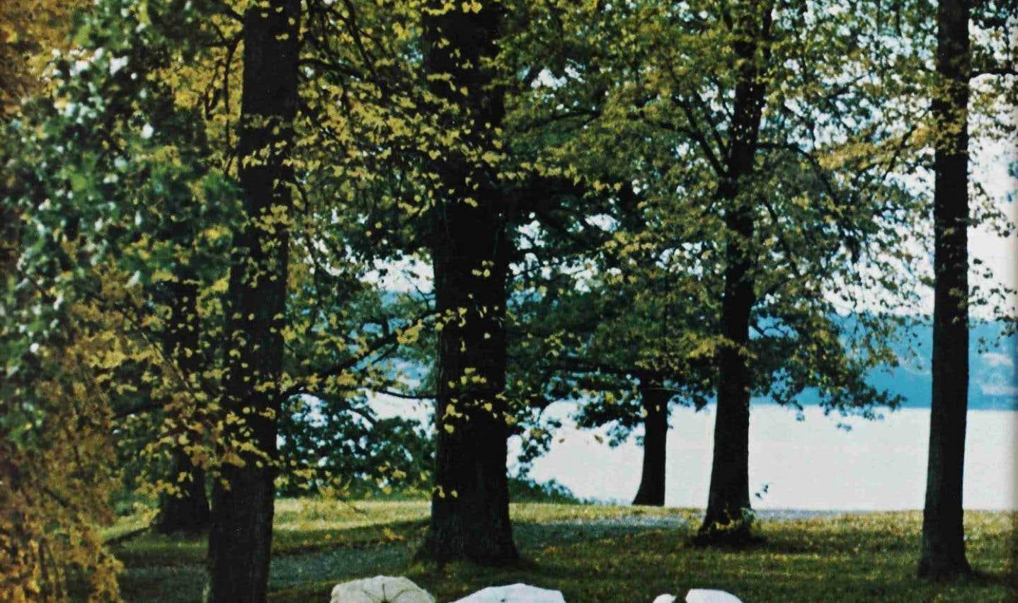 L'affiche originale du film «Cris et chuchotements», de Bergman