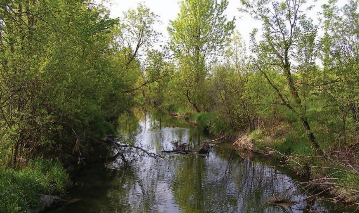 Le projet immobilier Cap Nature compte 5500 logements et prévoit la protection de 180 hectares de milieux naturels.