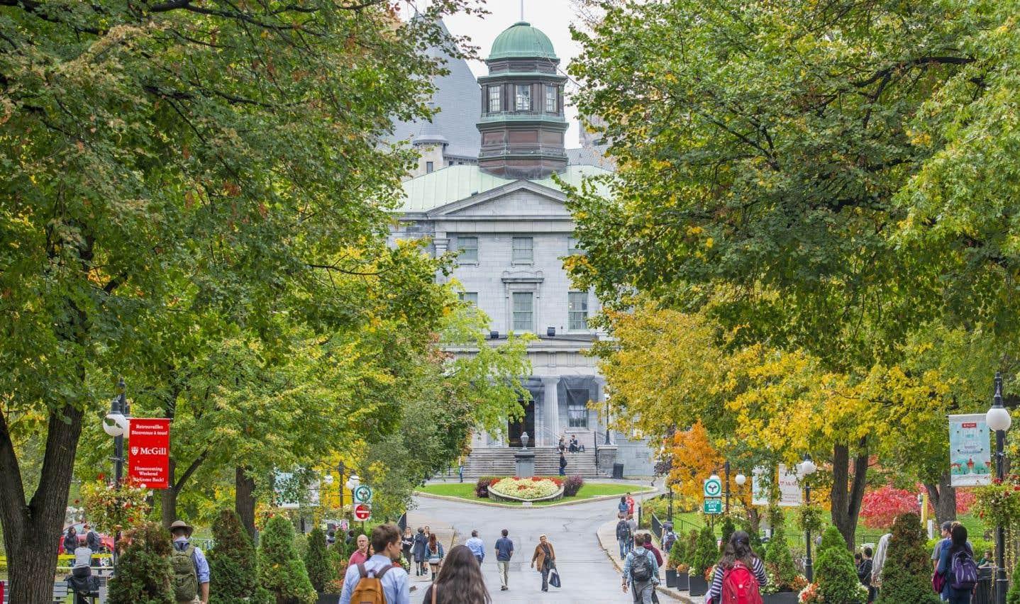 Sur les 65 établissements postsecondaires publics du Québec, seulement 3 universités et 5 cégeps ont une politique spécifique pour lutter contre les agressions sexuelles.