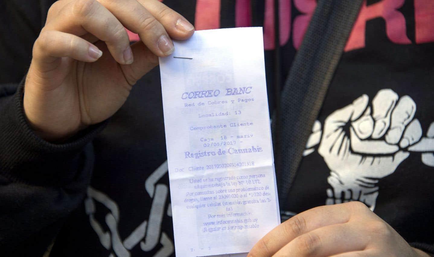 En juillet, l'Uruguay sera le premier pays à vendre en pharmacie du cannabis à usage récréatif à des personnes enregistrées.