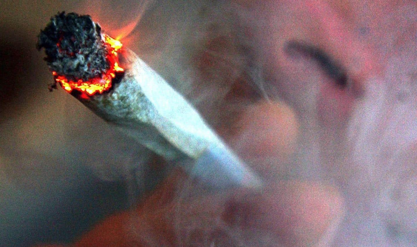 Légalisation de la marijuana: les médecins d'urgence sont inquiets