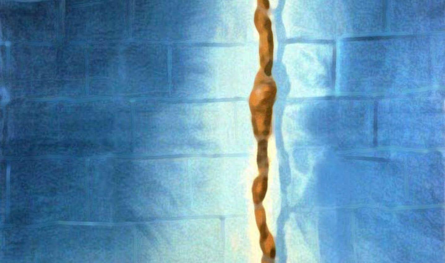 «Un condamné à mort s'est échappé», de Robert Bresson