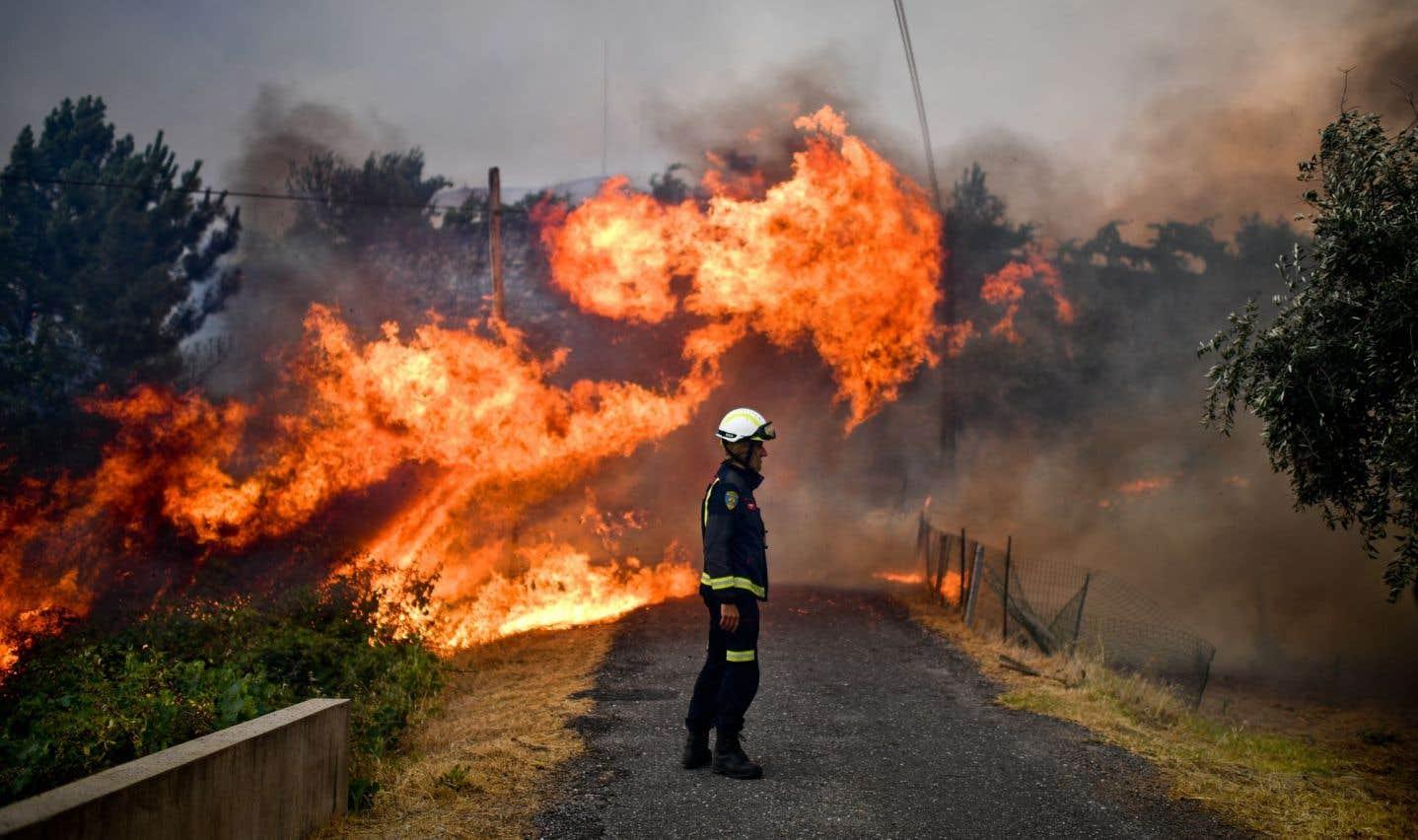 Sécheresses et incendies, des phénomènes appelés à s'intensifier