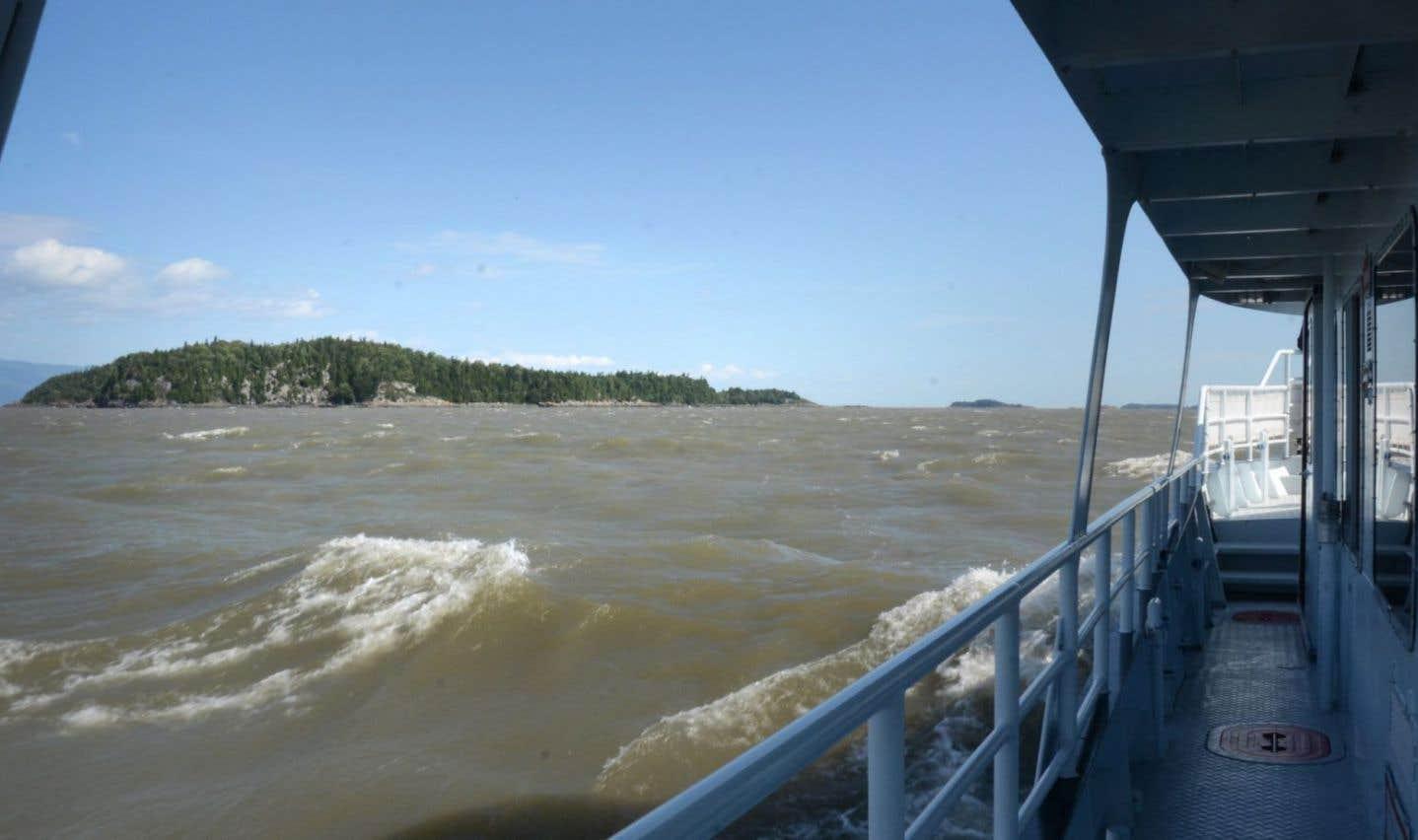 Golfe du Saint-Laurent: une vitesse maximale imposée pour protéger les baleines