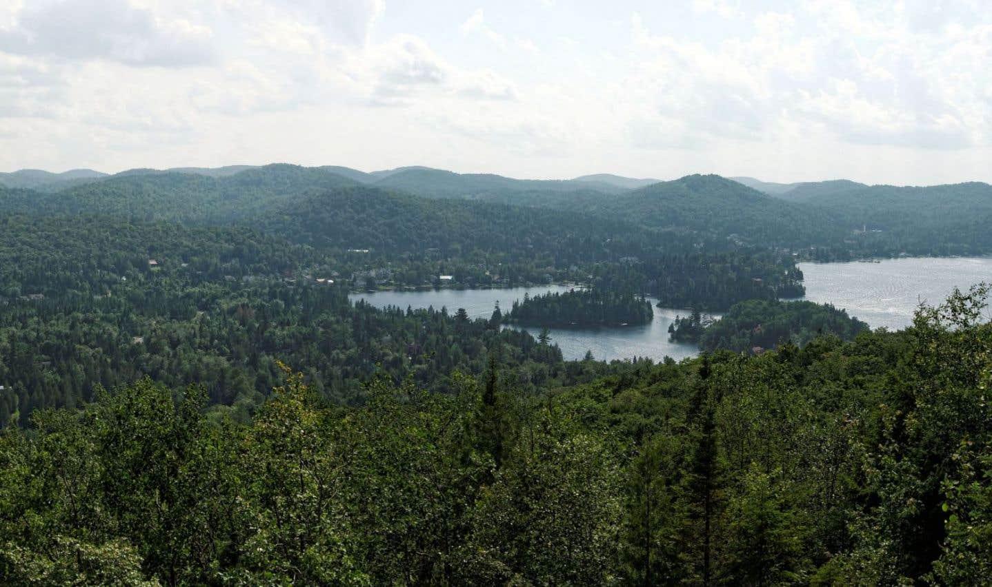 Feu vert à Hydro-Québec pour sa ligne électrique dans les Laurentides
