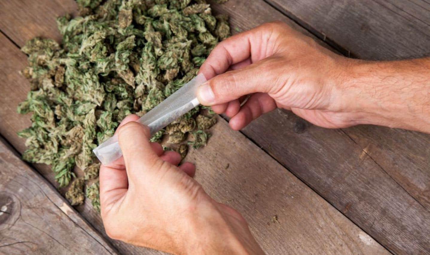 Marijuana: Ottawa n'a pas l'intention de se mêler des politiques provinciales