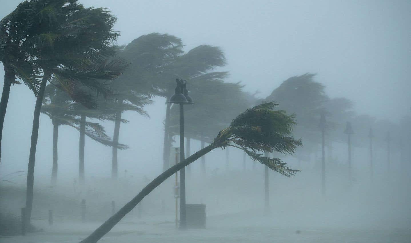 «Ces 30 dernières années, les tempêtes les plus fortes se sont renforcées du fait du réchauffement des océans», selon James Elsner, professeur de science atmosphérique à la Florida State University.
