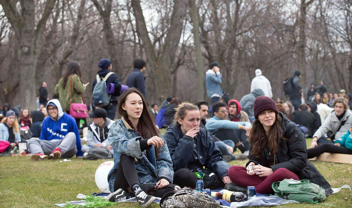De la marijuana inoffensive pour les jeunes
