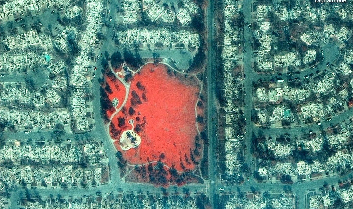 Un parc (en rouge) subsiste, dans un paysage dévasté