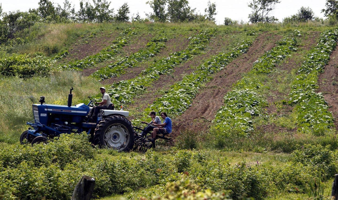 Selon le président de l'UPA, la fiscalité foncière agricole est un dossier à régler en priorité par les élus municipaux.