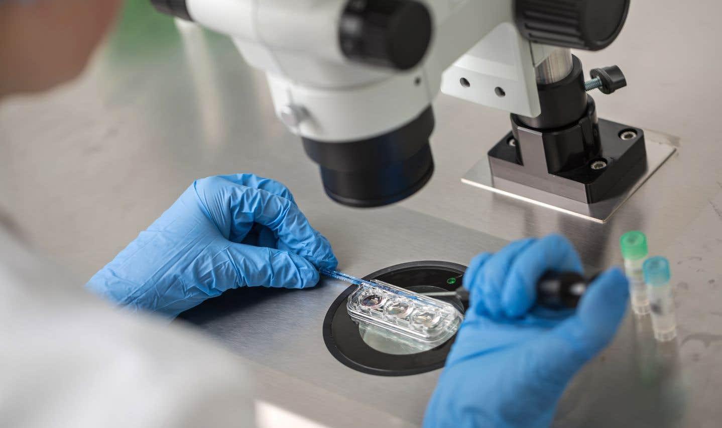 Des recherches ciblent l'âge des hommes comme facteur important dans l'infertilité.
