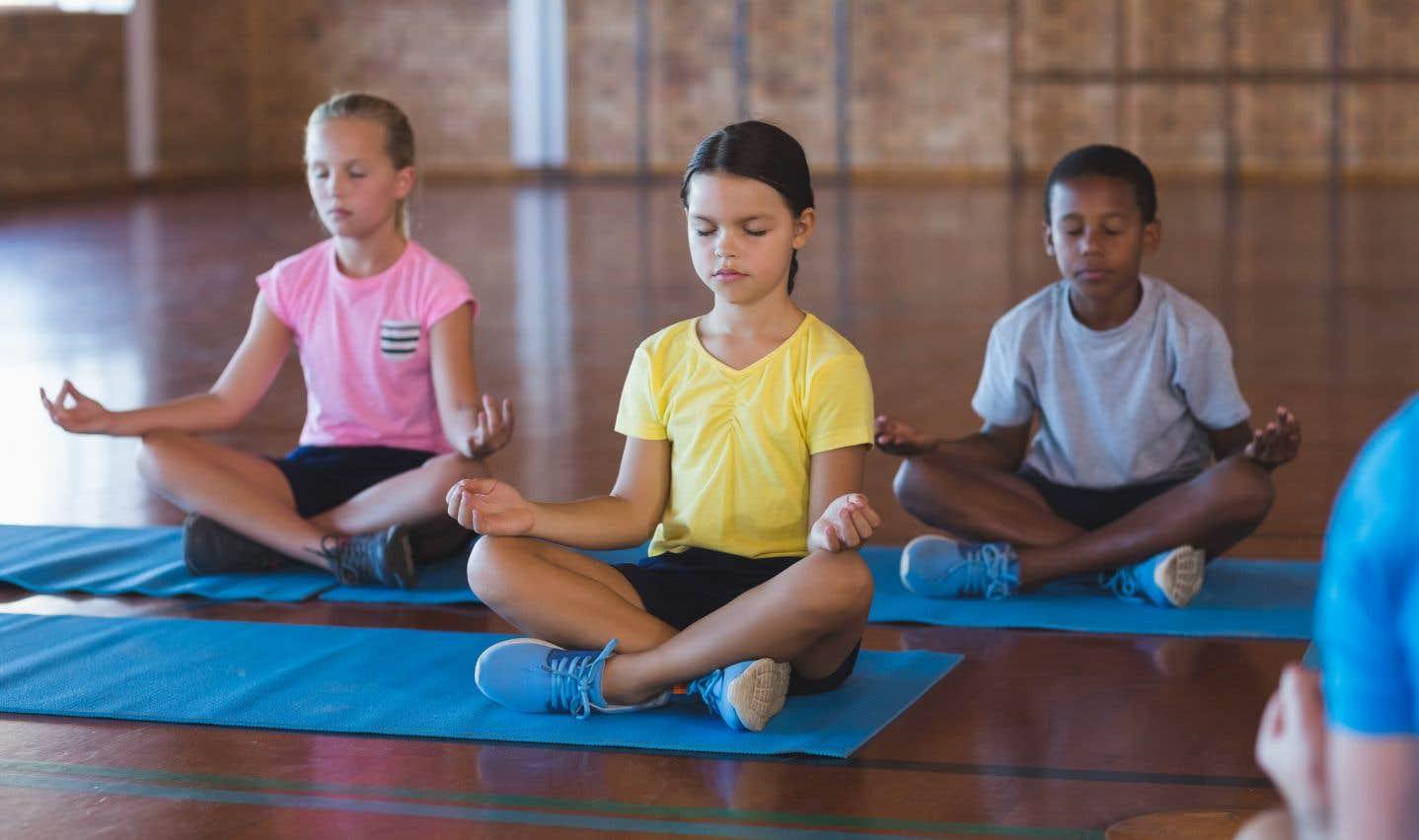 À l'heure actuelle, quelquesméta-analysesont démontré que la présence attentive et la méditation sont des méthodes prometteuses pour réduire le stress et l'anxiété chez les jeunes.