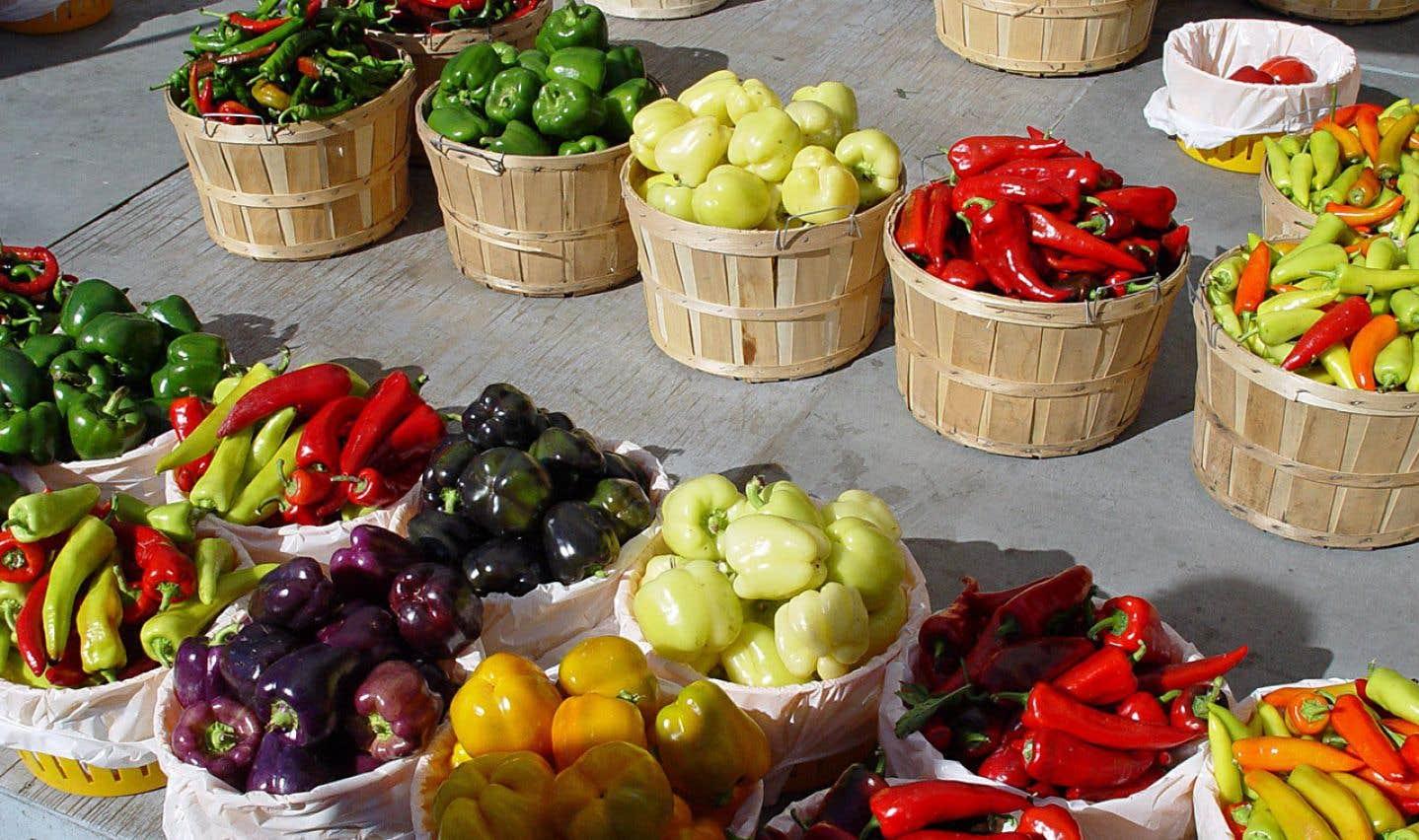 2017 a été marquée par un engouement pour les légumes et pour toutes les étiquettes associées (flexitarien, végétalien, végane…), un nouveau vocable est apparu: végétal.
