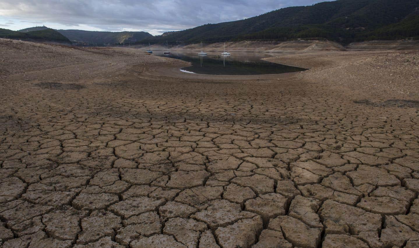 Selon l'étude, avec une hausse des températures de 2°C—qui pourrait arriver entre 2052 et 2070—, entre 24% et 32% de la surface terrestre deviendrait plus sèche.