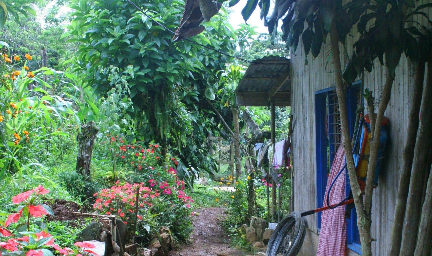 Les écogîtes du Costa Rica, entre nature et valeurs