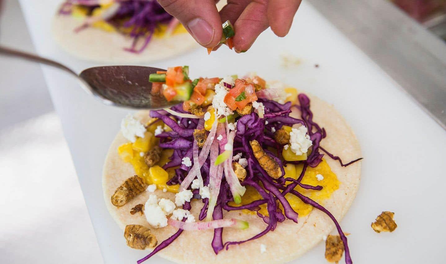 Des tacos aux grillons réalisés dans le cadre de l'activité Croque-insectes à l'Insectarium de Montréal