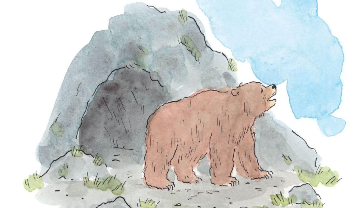 Illustration tirée d'«Ours — brun, blanc, noir», un album écrit et illustré par Pascal Girard.