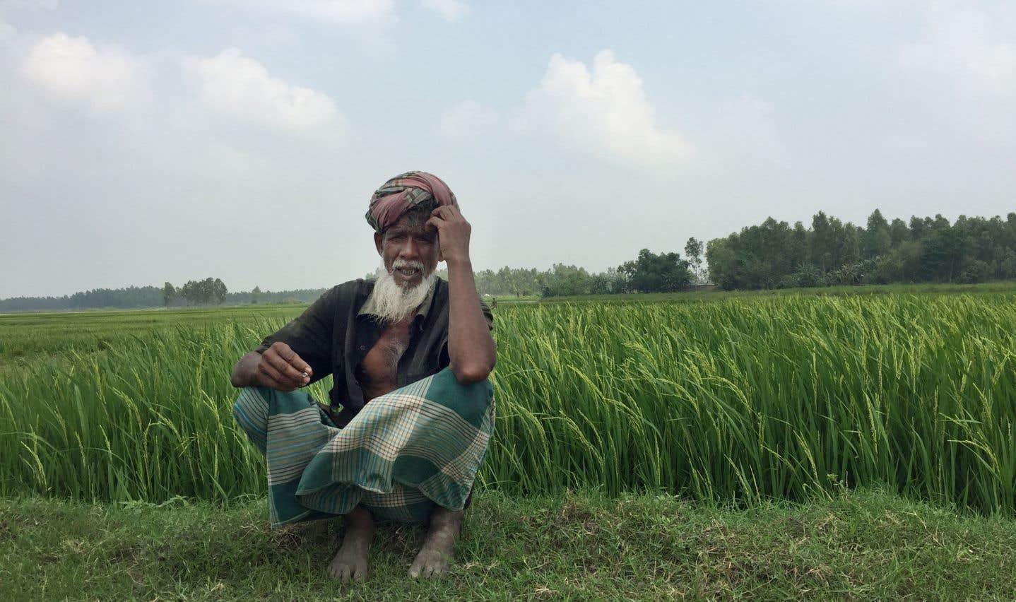 L'eau saline gagne sans cesse du terrain, transformant la flore et bouleversant la vie des habitants autant que celle des petits agriculteurs.