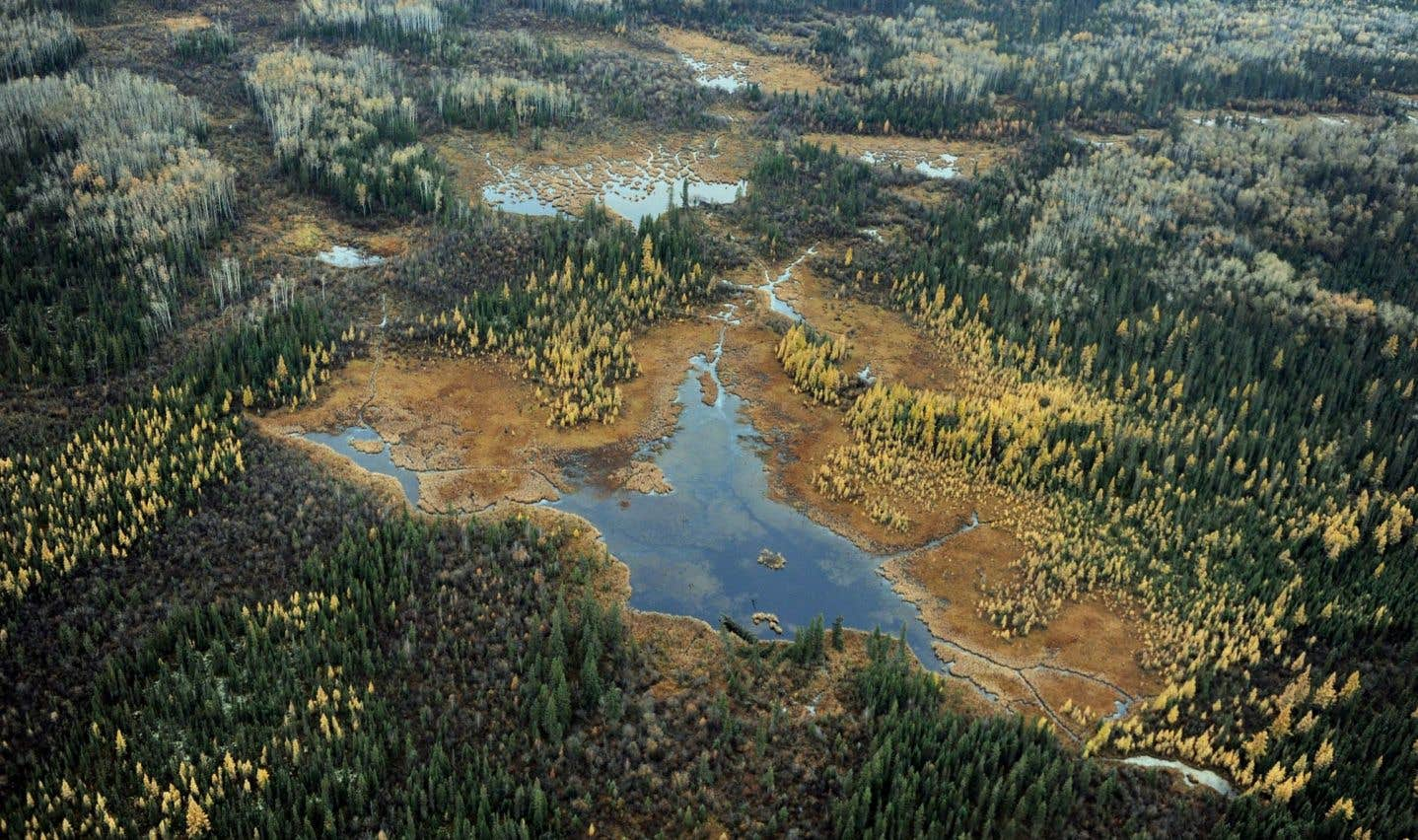 Le gouvernement Trudeau doit déposer cette semaine un projet de loi pour refondre le processus d'évaluations environnementales, deux ans après avoir lancé une vaste révision.