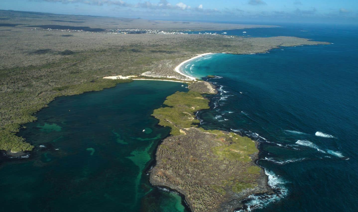 Les Galápagos, un paradis avec droits d'admission