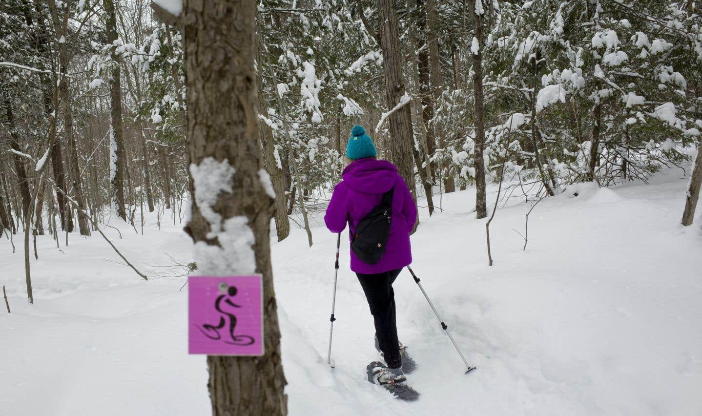 Ski ou raquette?
