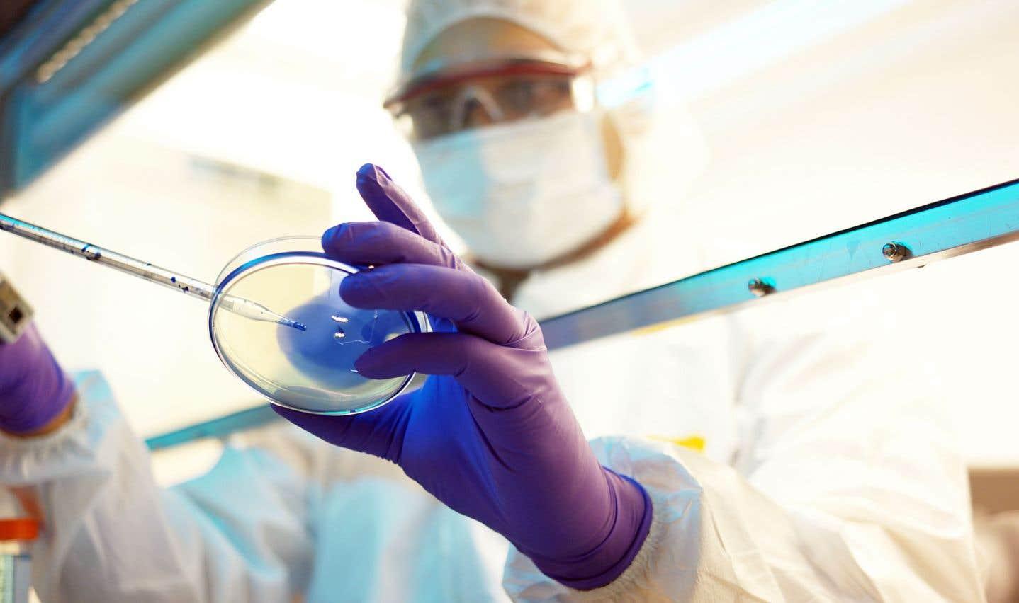 Ces antibiotiques ont démontré une puissante activité antibactérienne contre des pathogènes résistants aux antibiotiques utilisés en clinique.