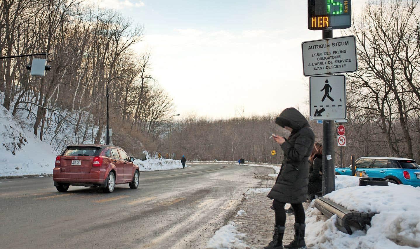 Dès le printemps, l'administration Plante fermera partiellement la voie Camillien-Houde aux automobilistes qui traversent le mont Royal.