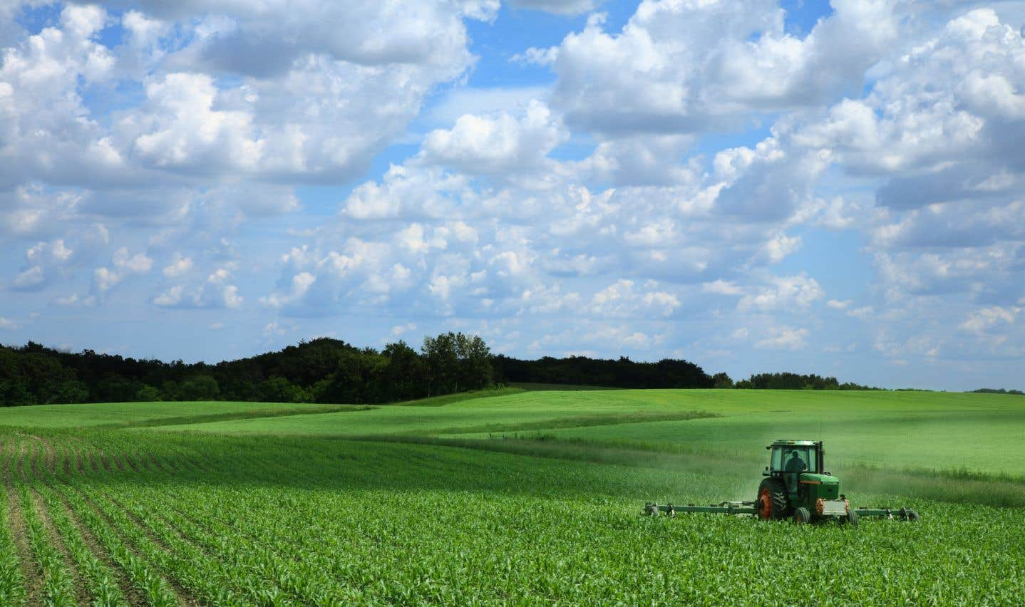 Trois des insecticides de type néonicotinoïdes les plus courants, ainsi que le chlorpyrifos et l'herbicide atrazine, ne pourront bientôt plus être appliqués sans l'autorisation écrite d'un agronome.