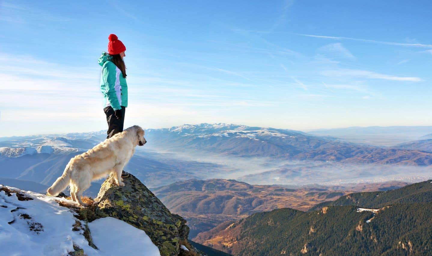 L'application mobile «Muzzos» recense les sentiers de randonnée et une foule de renseignements utiles aux propriétaires de chiens et de chats.
