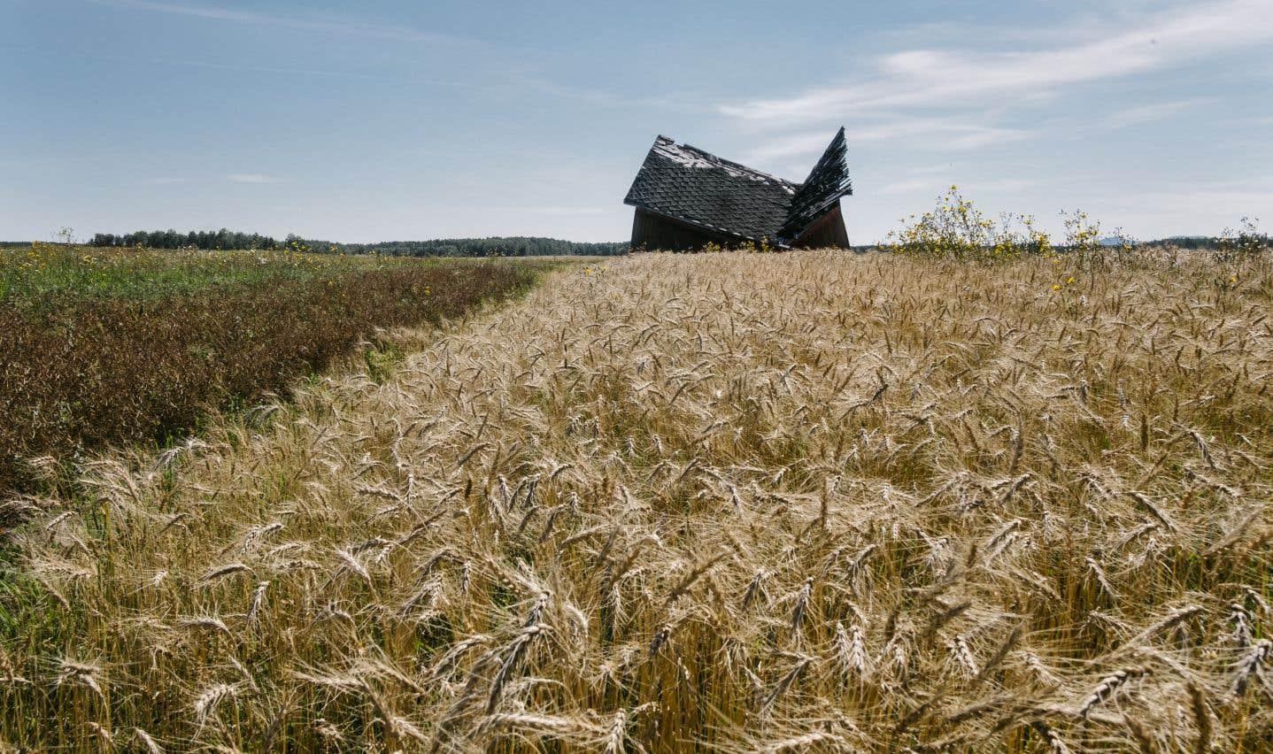 Paysage de campagne à Launay, un petit village d'un peu plus de 200 habitants entre Taschereau et Trecesson. On trouve encore bon nombre de vieilles granges sur les terres agricoles de la région.