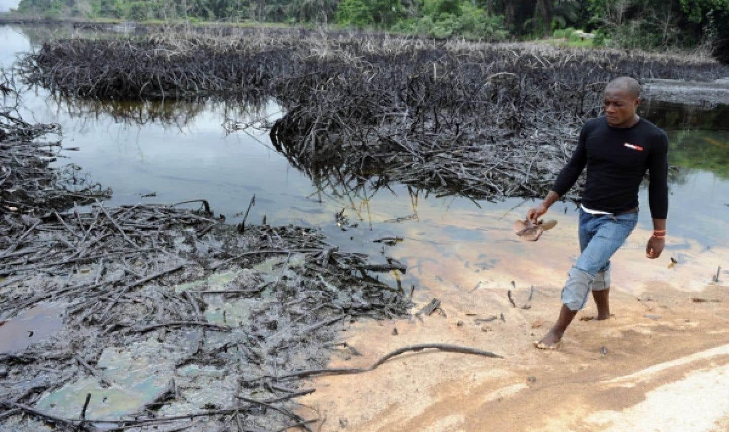 Nigéria - Abuja et Shell montrés du doigt dans une étude de l'ONU sur la pollution pétrolière