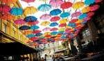 Belgrade est une ville sympa avec ses restaurants et cafés.