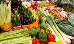 L'engouement pour les aliments biologiques et pour les fruits et légumes de qualité est de plus en plus grand au Québec.