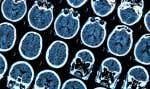 Qu'est-ce que la mémoire, d'un point de vue scientifique?